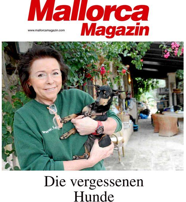 Die Presse über Feliz Animal Andratx