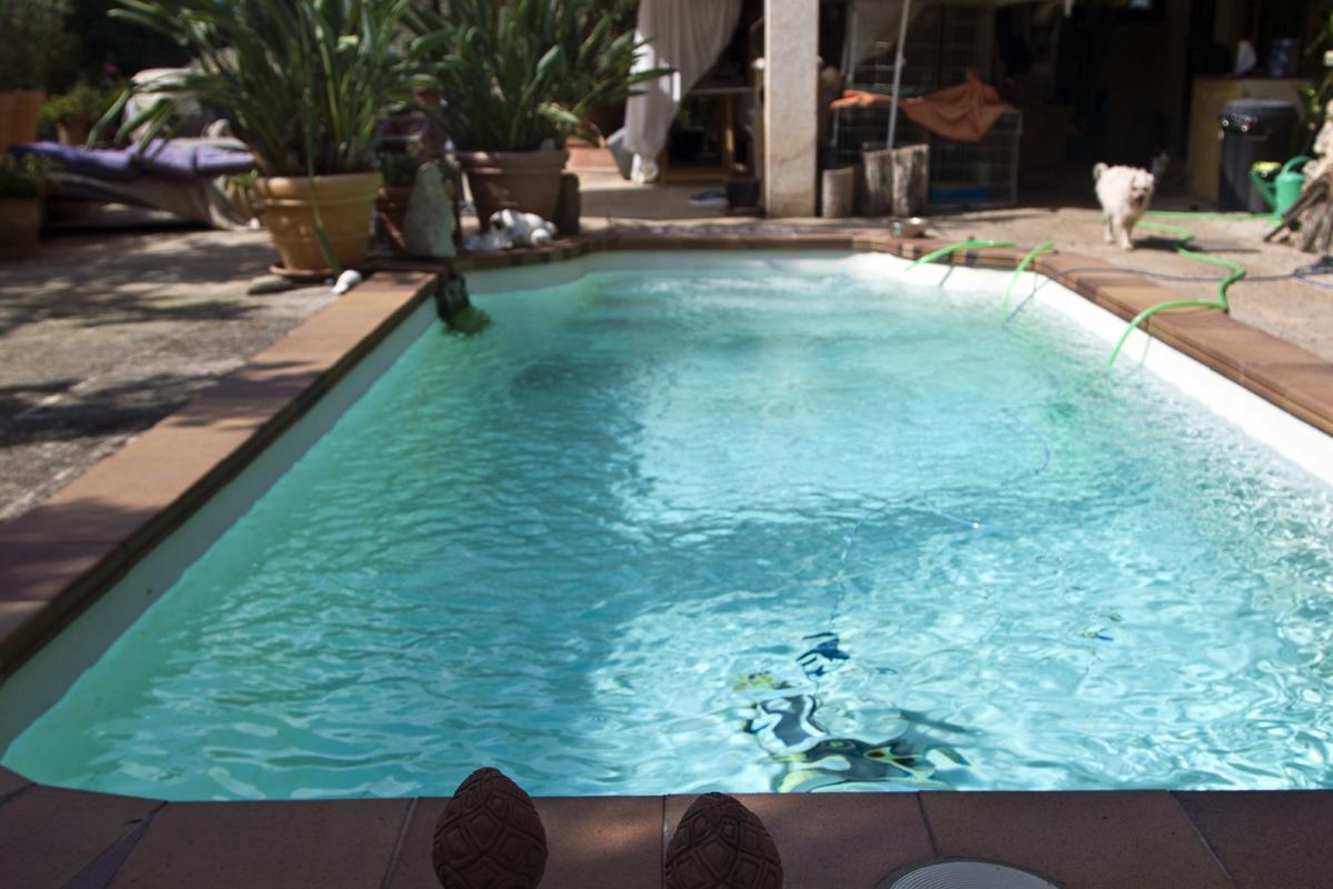 Tierheim Pool_5450